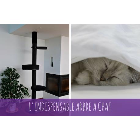 Arbre à chat chez catapart.fr